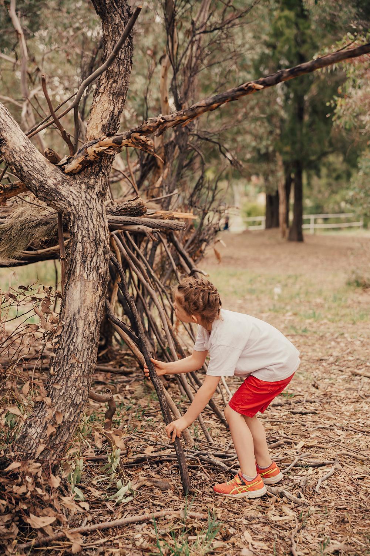 www.tracyleephotography.net